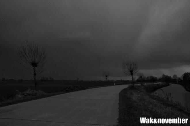 wak&november_wordpress