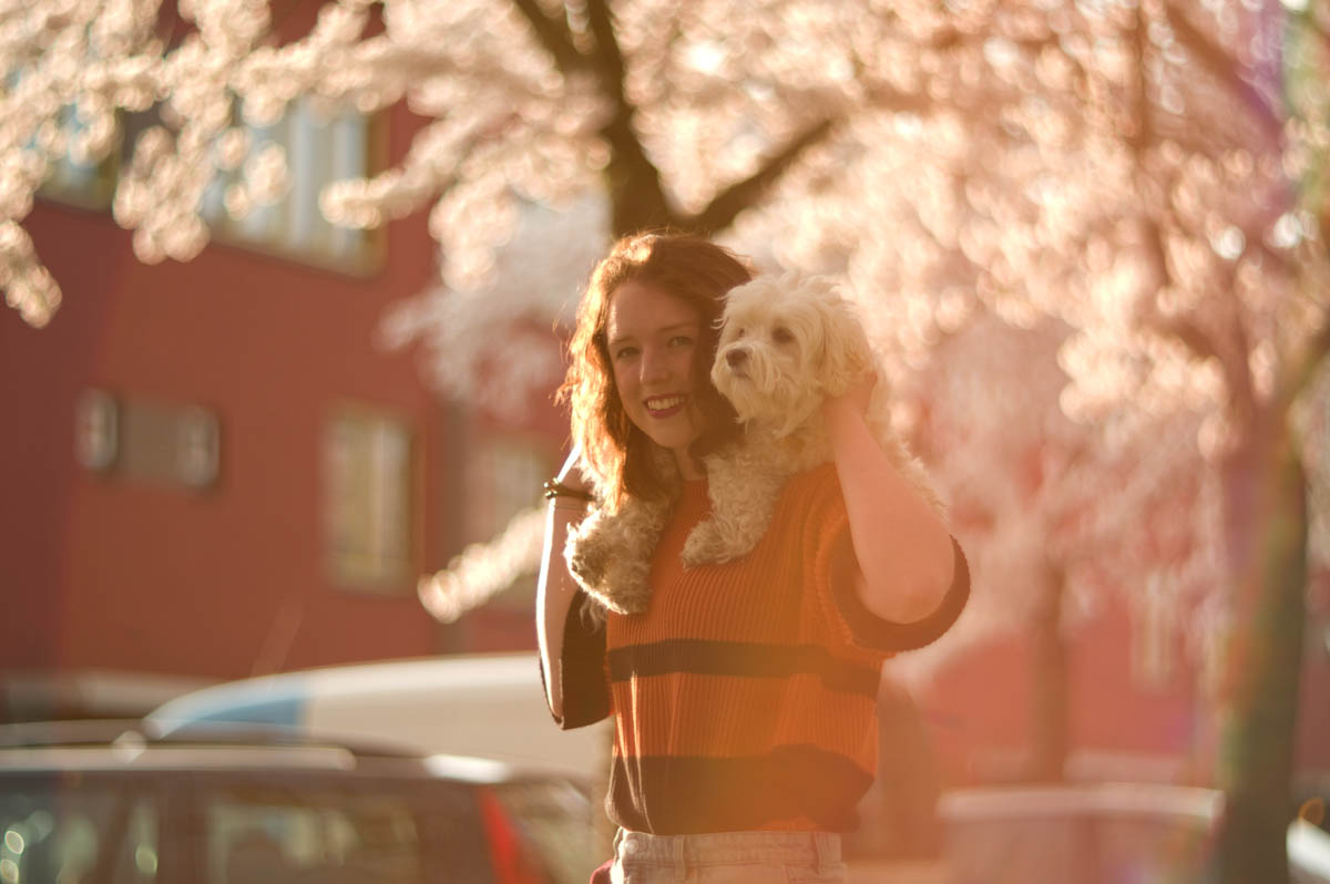 brunette with cute white dog jeffrey wakanno fotografie japanese cherry blossom