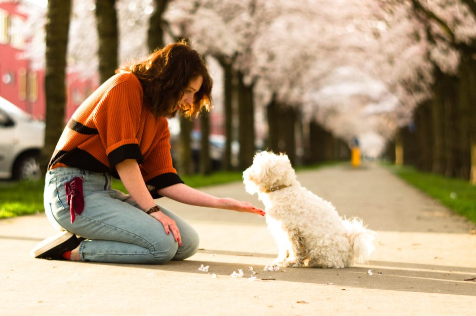 cute girl with white dog by Jeffrey Wakanno