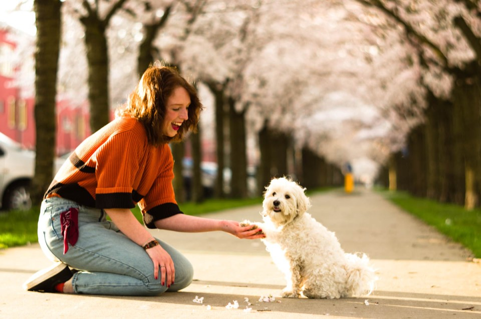 beauty brunette marijke with her little cute dog mómo